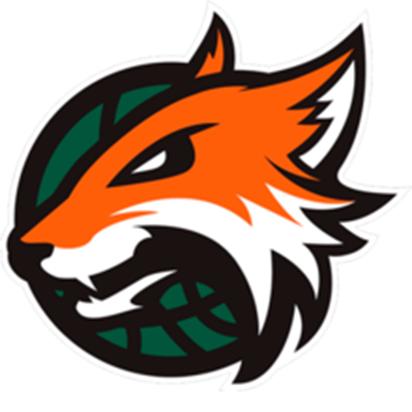 Plymouth Raiders Logo