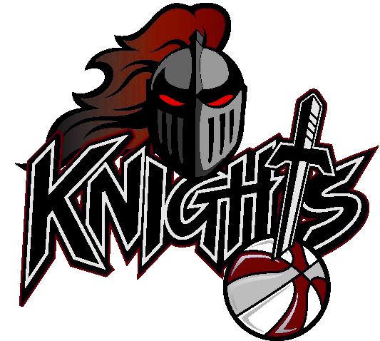 Team Newcastle Logo